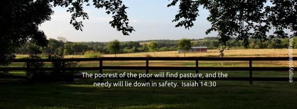 find pasture