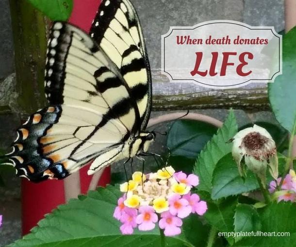 When Death Donates Life