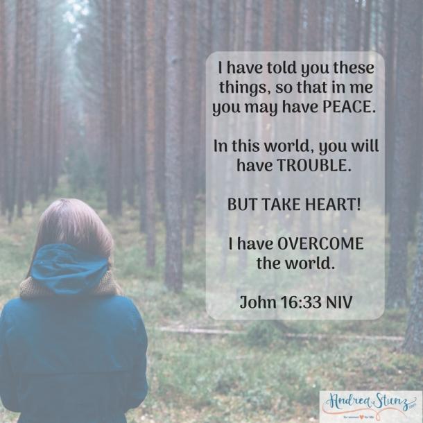 John 16:33 NIV